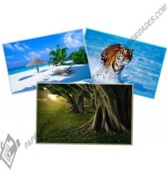 Impresion fotografica a color mediana